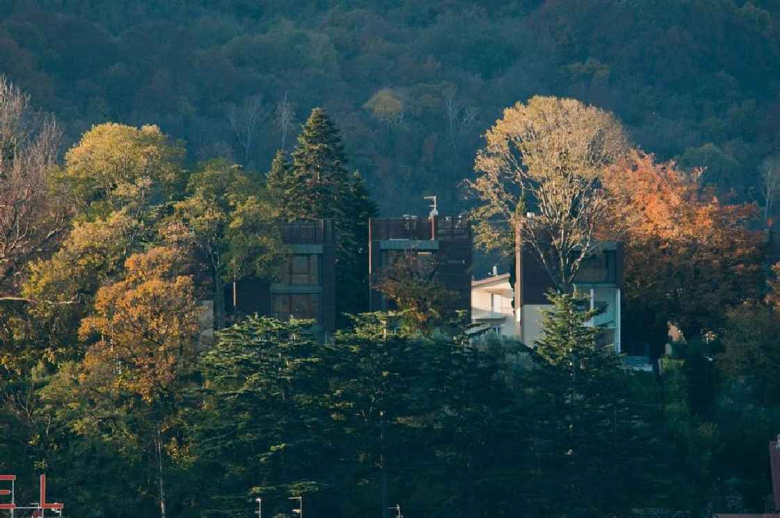 casa sull albero11